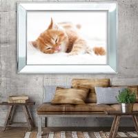 Ayna Çerçeveli Kedi Modeli Kanvas Tablo